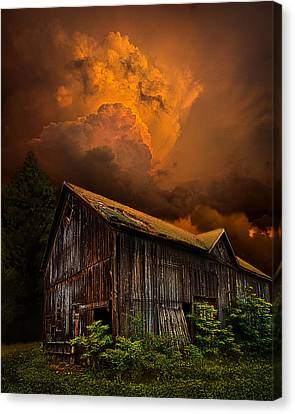 Recluse Canvas Print by Phil Koch