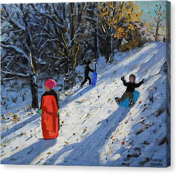 Red Sledge Canvas Print by Andrew Macara