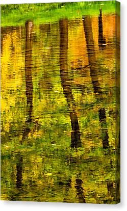 Reflecting On Autumn Canvas Print by Steve Harrington