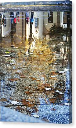 Reflections Canvas Print by Lucy D