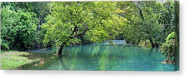 River Flowing Through A Forest, Ozark Canvas Print by Panoramic Images