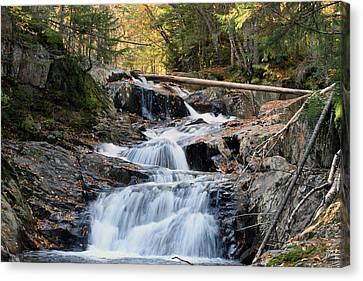 Roaring Brook Falls Canvas Print by Brett Pelletier