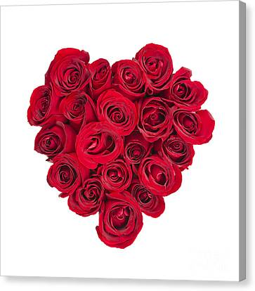 Rose Heart Canvas Print by Elena Elisseeva