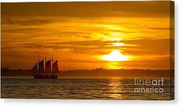 Sailing Yacht Schooner Pride Sunset Canvas Print by Dustin K Ryan