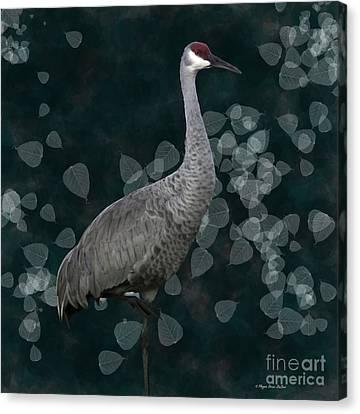 Sandhill Crane On Leaves Canvas Print by Megan Dirsa-DuBois