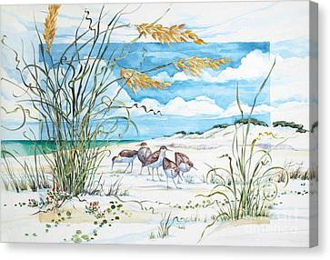 Sandpiper Dunes Canvas Print by Paul Brent