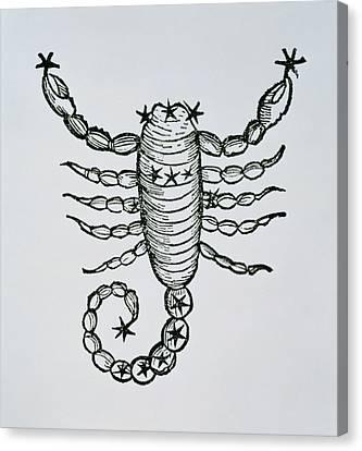 Scorpio Canvas Print by Italian School
