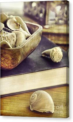 Seashells Canvas Print by HD Connelly