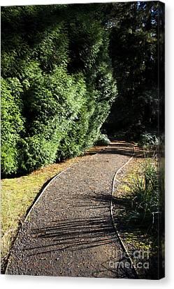 Secret Garden Path Canvas Print by Jorgo Photography - Wall Art Gallery
