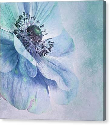 Shades Of Blue Canvas Print by Priska Wettstein