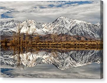Sierra Reflections Canvas Print by Cat Connor