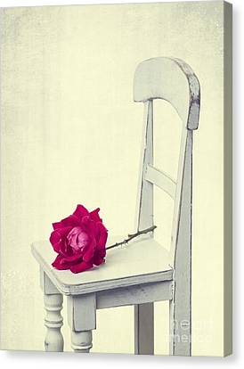 Single Red Rose Canvas Print by Edward Fielding