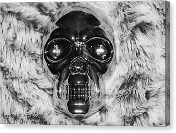 Skull In Black And White Canvas Print by Rob Hans