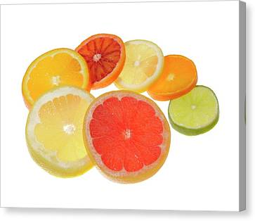 Slices Of Citrus Fruit Canvas Print by Cordelia Molloy