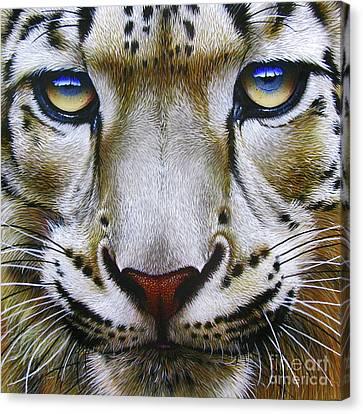 Snow Leopard Canvas Print by Jurek Zamoyski
