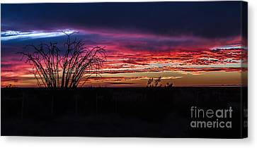 Southwest Sunset Canvas Print by Robert Bales