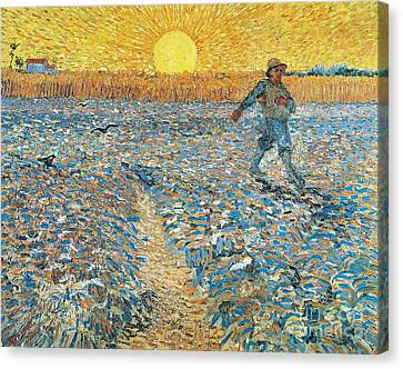 Sower Canvas Print by Vincent van Gogh