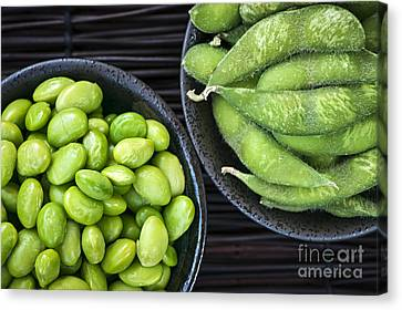 Soy Beans In Bowls Canvas Print by Elena Elisseeva