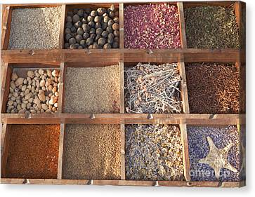 Spices Canvas Print by Roberto Morgenthaler