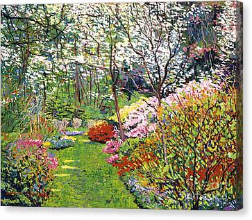 Spring Forest Vision Canvas Print by David Lloyd Glover