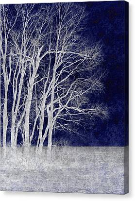 Spring Frost Canvas Print by Luke Moore