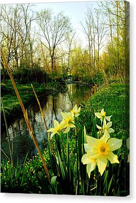 Spring In Prospect Canvas Print by Andrew Martin