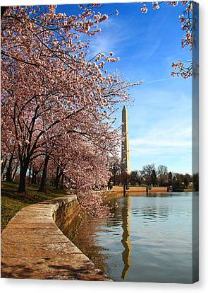 Spring Canvas Print by Mitch Cat