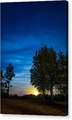 Starry Night Canvas Print by Shelby  Young