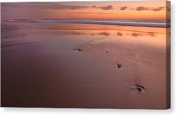 Steppin' Stone Canvas Print by Bill Wakeley