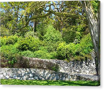 Stone Wall 1 Canvas Print by David Trotter