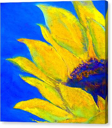 Sunflower In Blue Canvas Print by Sue Jacobi
