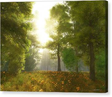 Sunlit Meadow Canvas Print by Cynthia Decker