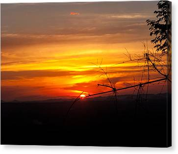 Sunset Canvas Print by Nawarat Namphon