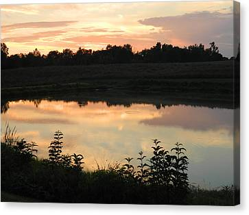 Sunset Reflection Canvas Print by Linda Brown