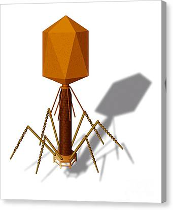 T4 Bacteriophage, Artwork Canvas Print by Art for Science