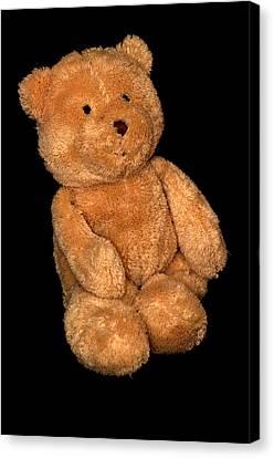 Teddy Bear  Canvas Print by Toppart Sweden