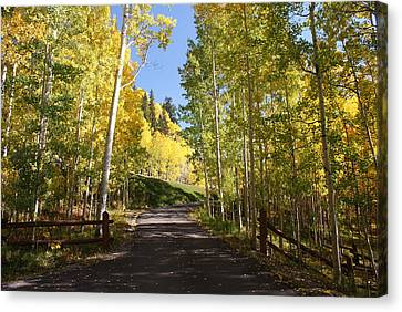 Telluride Colorado Fall Canvas Print by Michael J Bauer