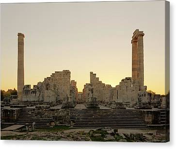 Temple Of Apollo Canvas Print by David Parker