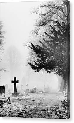 The Cross Canvas Print by Tim Gainey