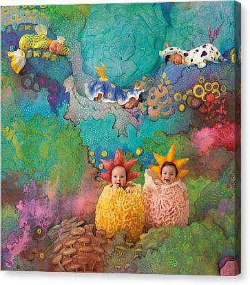The Great Barrier Reef Canvas Print by Anne Geddes