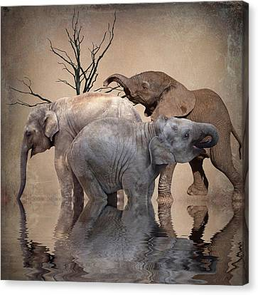 The Herd Canvas Print by Sharon Lisa Clarke