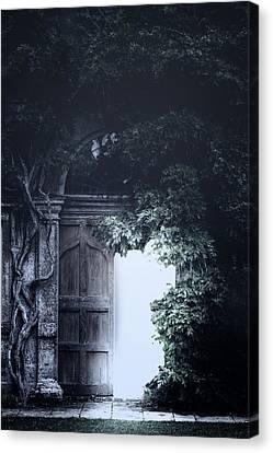 The Light Canvas Print by Joana Kruse