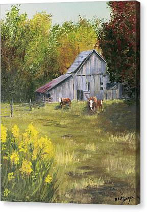 The Old Cow Barn Canvas Print by Bev Finger