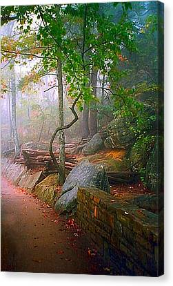 To The Pinnacle Canvas Print by Julie Dant