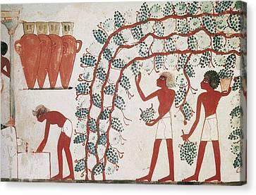 Tomb Of Nakht. Egypt. Dayr Al-bahri Canvas Print by Everett