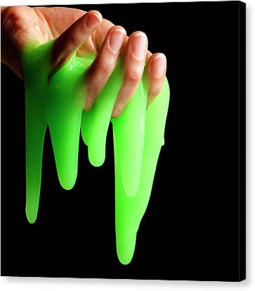 Toy Slime Canvas Print by Science Photo Library