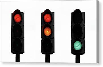 Traffic Lights Canvas Print by Cordelia Molloy