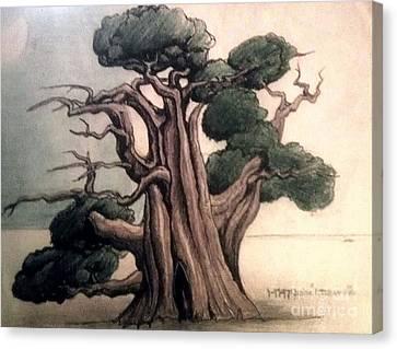 Tree Canvas Print by Justin Moranville