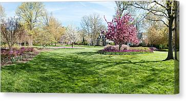 Trees In A Garden, Sherwood Gardens Canvas Print by Panoramic Images