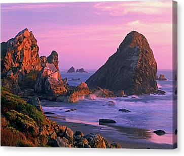 Usa, Oregon, Harris State Beach Canvas Print by Jaynes Gallery